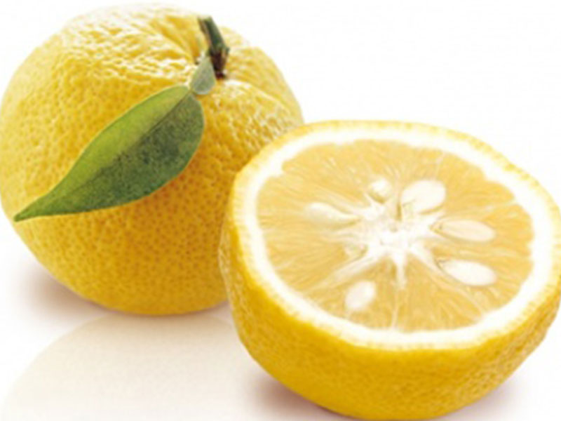 Fresh Yuzu citrus with unmistakable aroma