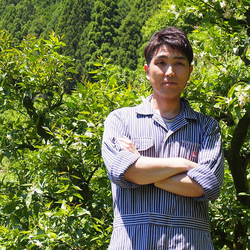 japanese citrus fruits farm